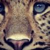 Avatar of Paulina23.@