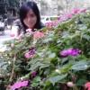 Profile photo of cherry.vo