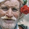 Profile photo of Rachid Human