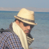 Profile photo of Ali M Abu-Taleb