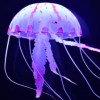 Profile photo of Violet Jellyfish