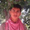 Profile photo of Hamayoun khan